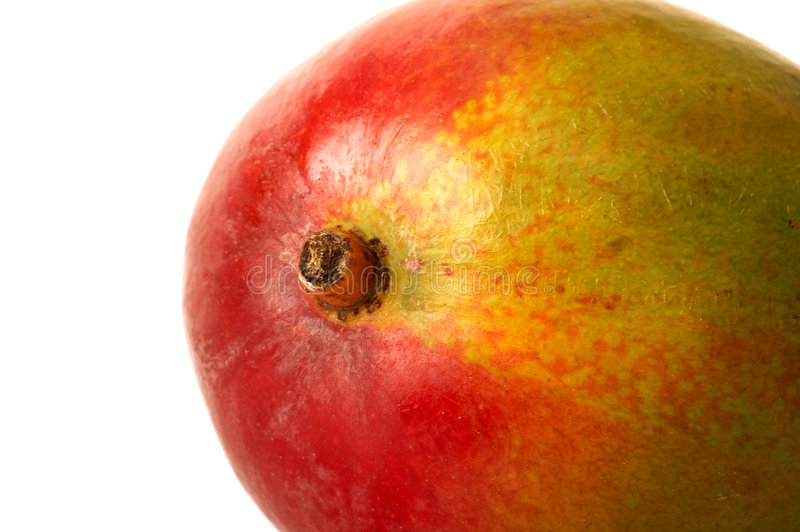 Nahes hohes der Mangofrucht lizenzfreie stockfotos