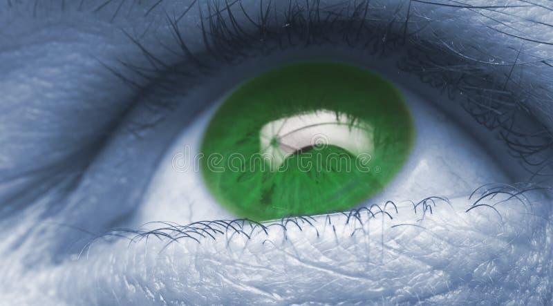 Nahes hohes des Auges stockbild