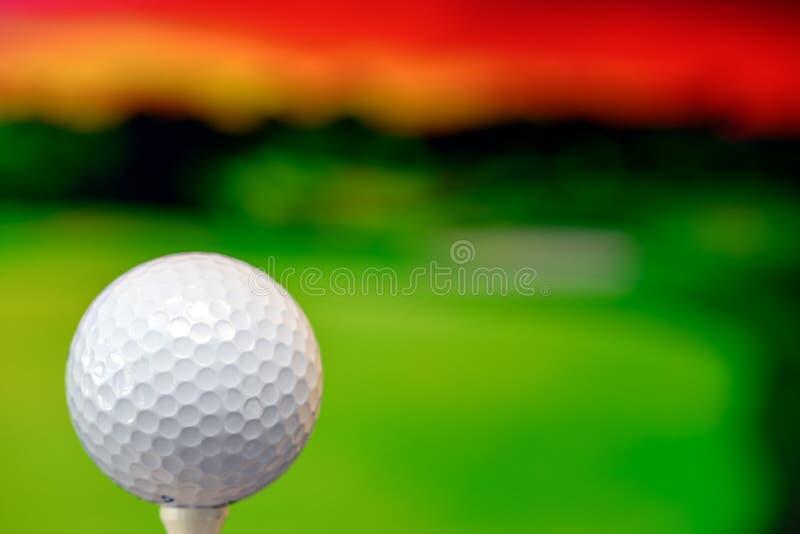 Nahes hohes Foto eines Golfballs im Golfplatz in einem warmen Sonnenunterganglicht lizenzfreies stockbild