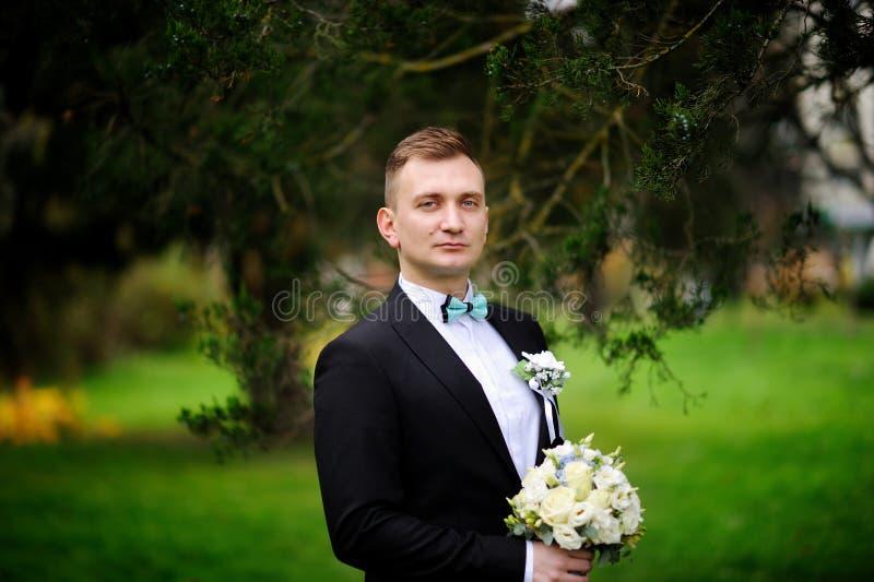 Nahes hohes Porträt des hübschen stilvollen Bräutigams im Freien im Park stockfoto