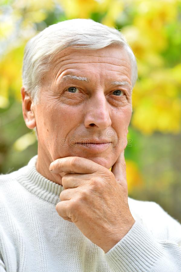 Nahes hohes Porträt eines durchdachten älteren Mannes stockbild