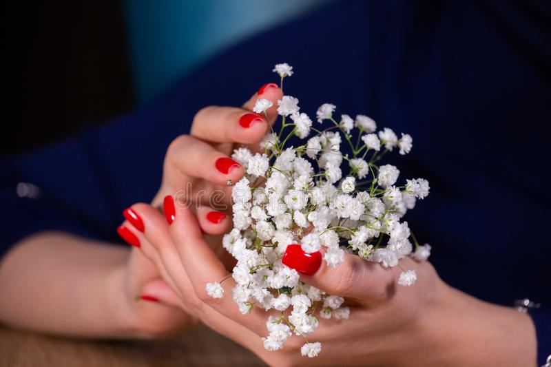 Nahes hohes Porträt von Mädchen manikürte die Hände, die begrenzte Schärfentiefe des kleinen netten Blumenblumenstraußes ha stockfoto
