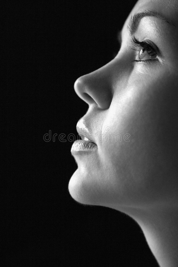 Nahes hohes Profil der Frau. stockfotografie