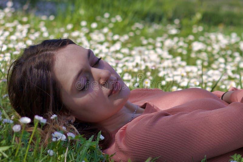 Nahes Porträt der jungen Frau liegend auf einem Teppich von Gänseblümchen stockfotos