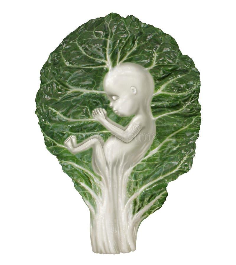 Nahrung in der Schwangerschaft lizenzfreie abbildung