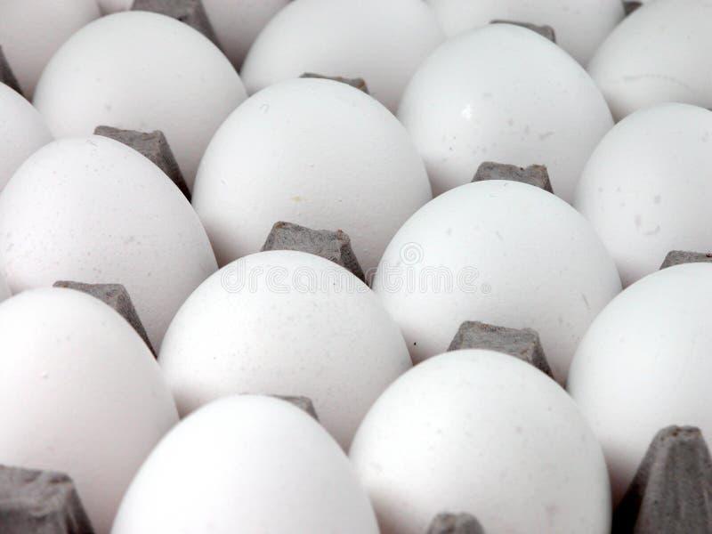 Download Nahrung: Eier stockbild. Bild von huhn, dutzend, makro, weiß - 37155