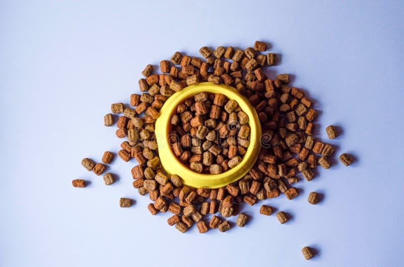 Nahrung für Haustiere in einer gelben Maske und um sie lizenzfreie stockfotos