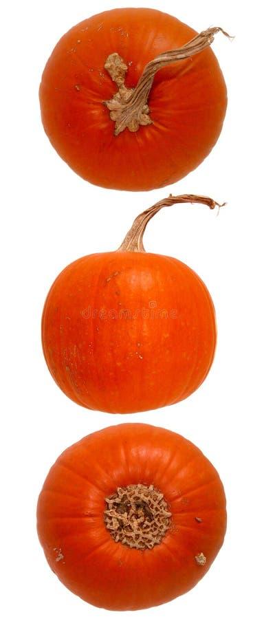 Download Nahrung: Kürbis-Trio stockfoto. Bild von fall, halloween - 27978