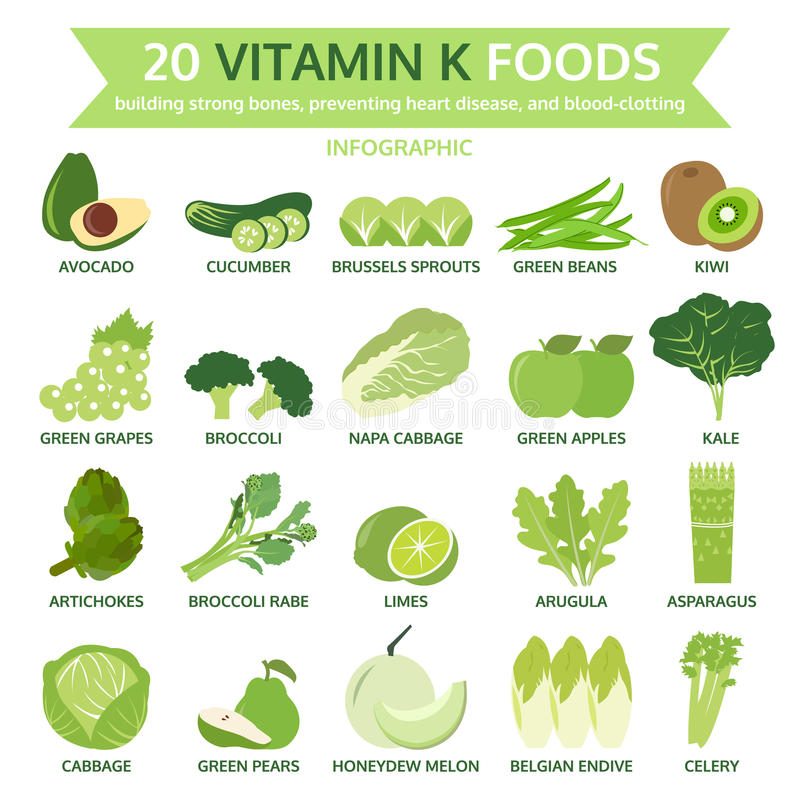 20 Nahrungsmittel des Vitamins k, Informationsgraphik, Lebensmittelvektor stock abbildung