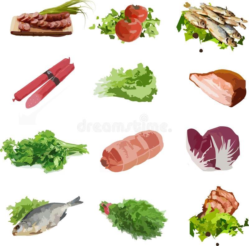 Nahrungsmittelgemüse-Fleischgrüns, Fische lizenzfreie abbildung