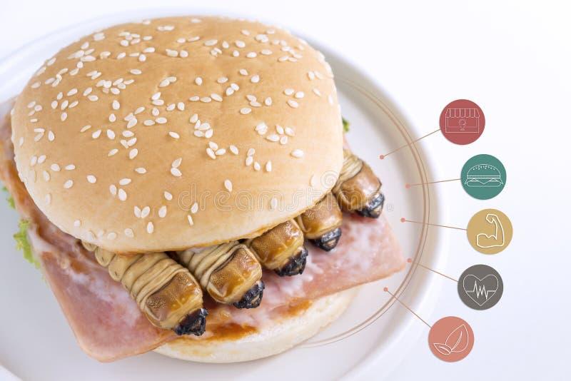 Nahrungsmittelinsekten: Wurmkäfer des Scarabäus-Käfers für das Essen als Nahrungsmittel im Brotburger auf Platte mit Medienikonen stockfotografie