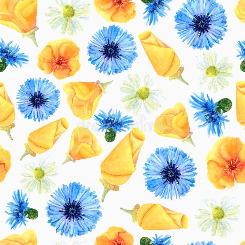 Nahtlose Beschaffenheit von Aquarellsommer-Wiesenblumen Heller Blumendruck mit natürlichen Elementen vektor abbildung
