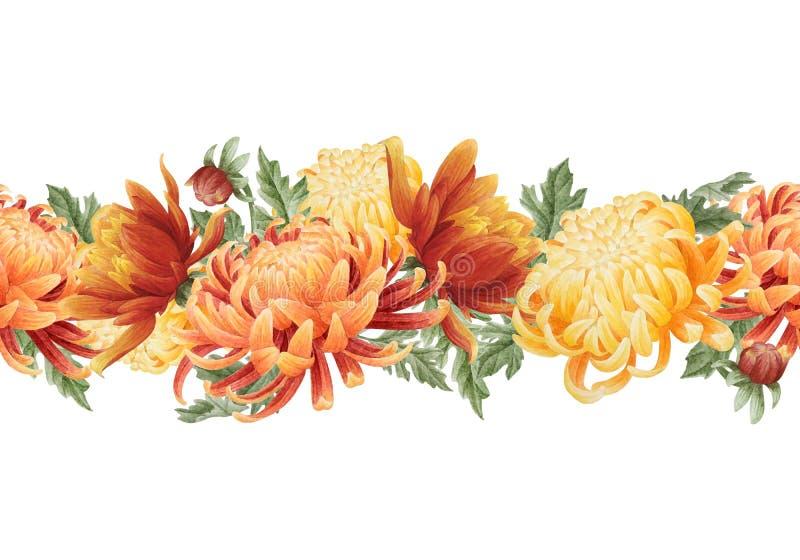 Nahtlose Grenze des Aquarells mit Chrysantheme stock abbildung