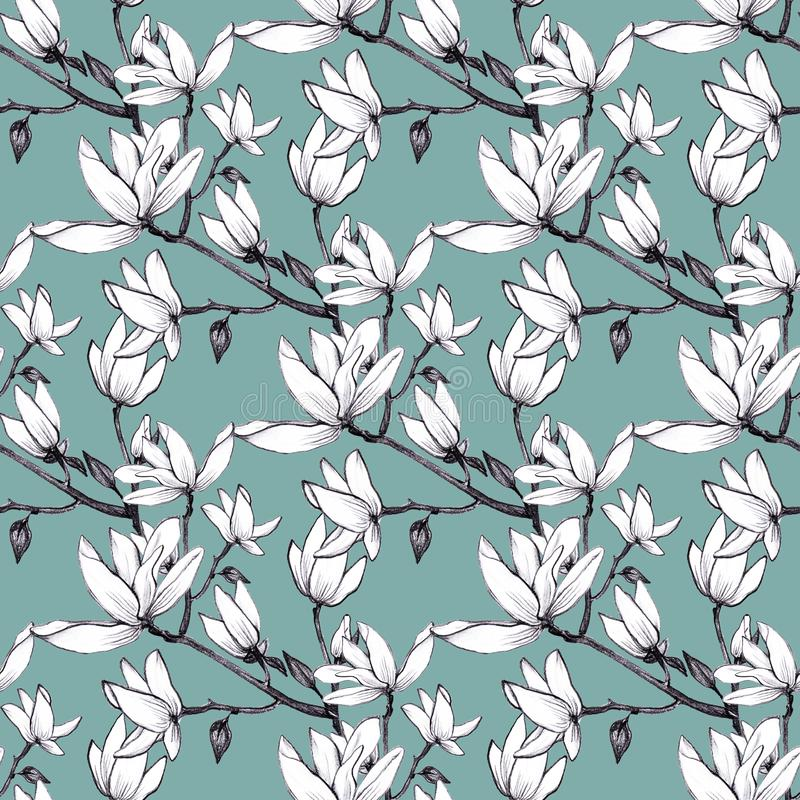 Nahtlose Magnolienblumen des Handgezogenen Musters auf grünem Hintergrund lizenzfreie abbildung