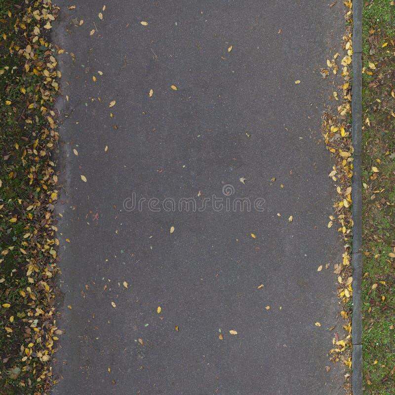 Nahtlose Straßen-Beschaffenheit mit Blättern stockfotografie