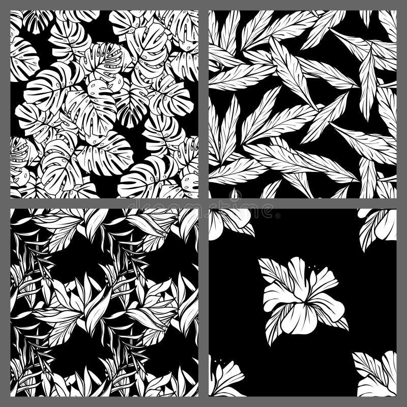Nahtlose tropische Schwarzweiss-Blatt-Blumenvektor-Muster-Hintergrund-Tapeten-Design lizenzfreie abbildung