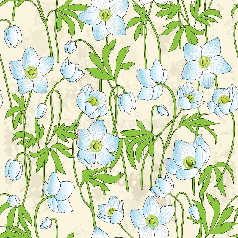 Nahtloser Blumenhintergrund mit Anemonen lizenzfreie abbildung