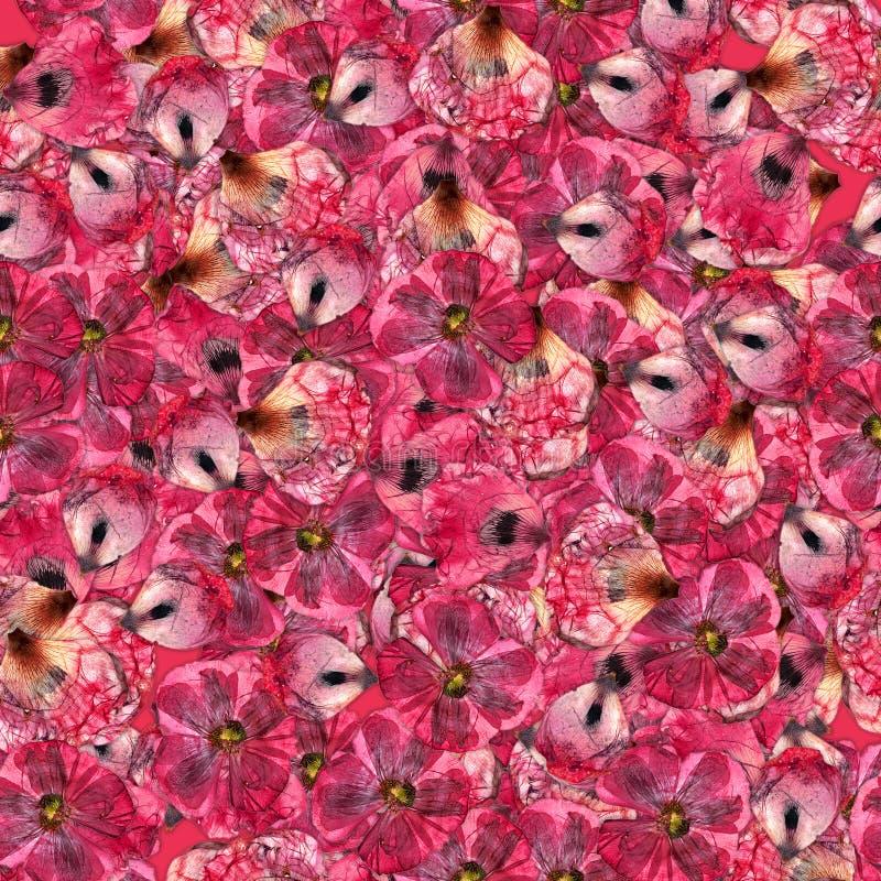 Nahtloser Hintergrund mit dem mehrfarbigen Blumenblumenblatt lizenzfreies stockbild