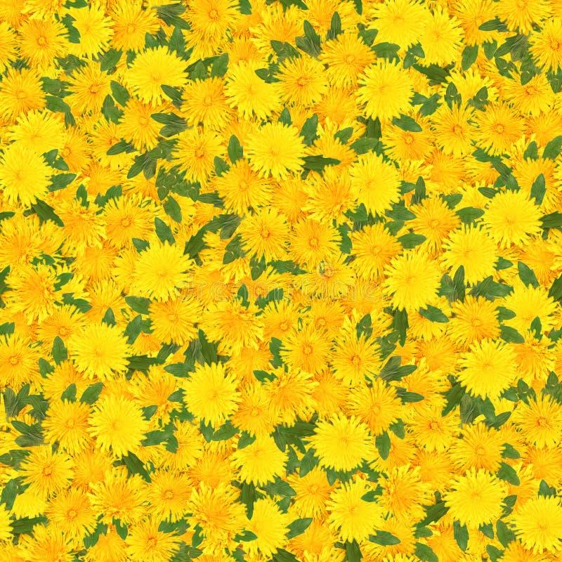 Nahtloser Hintergrund mit dem mehrfarbigen Blumenblumenblatt stockbild