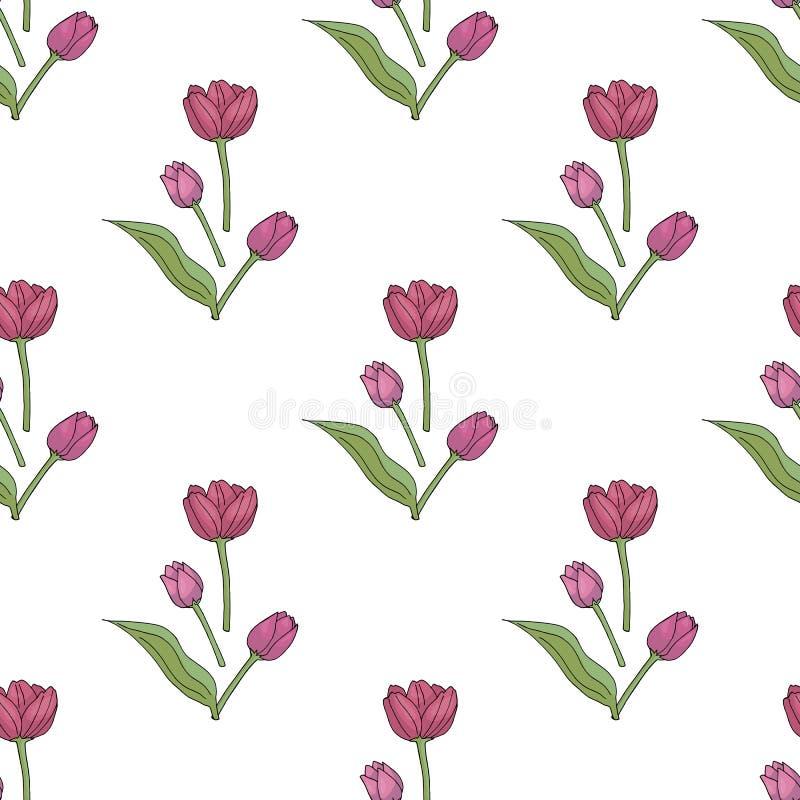 Nahtloser Hintergrund mit reizenden rosa Tulpen auf weißem Hintergrund lizenzfreie abbildung