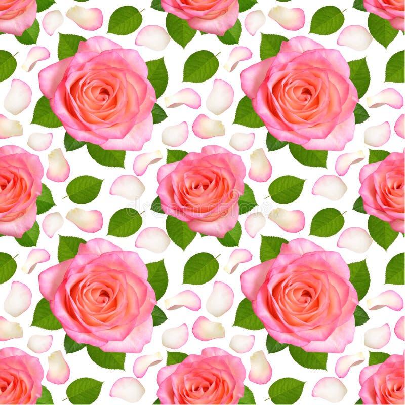 Nahtloser Hintergrund mit rosa Rosen und den Blumenblättern lizenzfreie abbildung