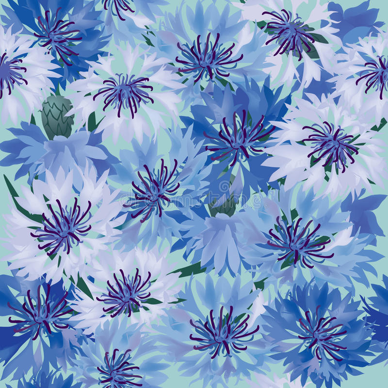 Nahtloser Hintergrund mit Wiesenblume vektor abbildung