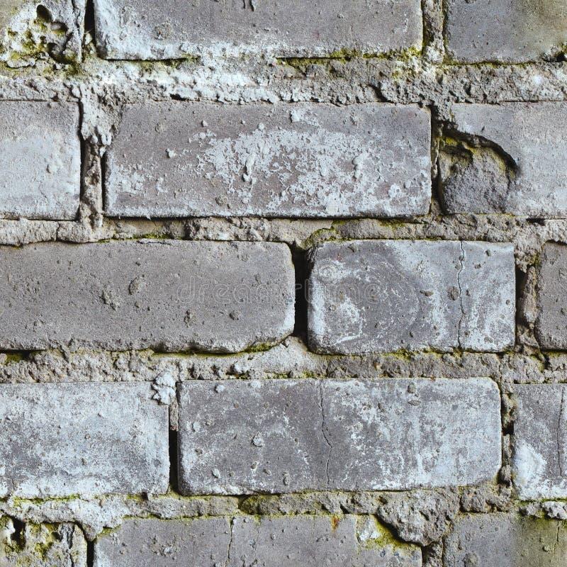 Nahtloser Hintergrund - schmutzige schimmelige Backsteinmauer lizenzfreie stockfotografie