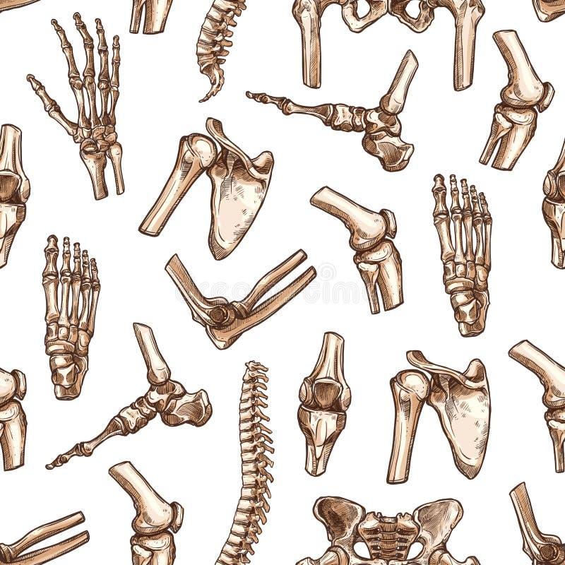 Nahtloser Musterhintergrund des menschlichen skeleton Knochens lizenzfreie abbildung