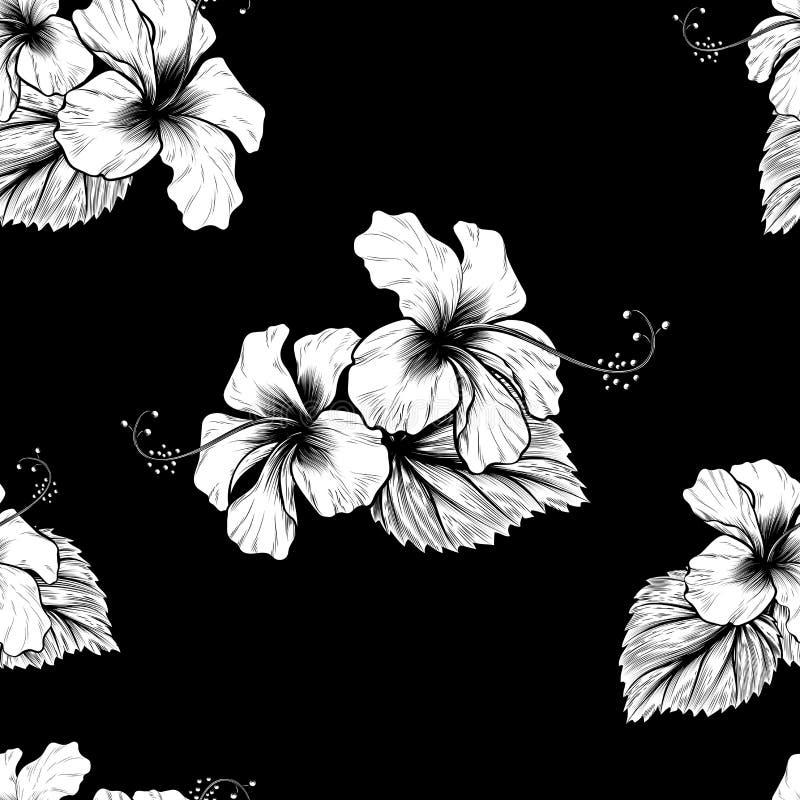Nahtloser tropischer Hibiscus blüht Hintergrund lizenzfreie abbildung