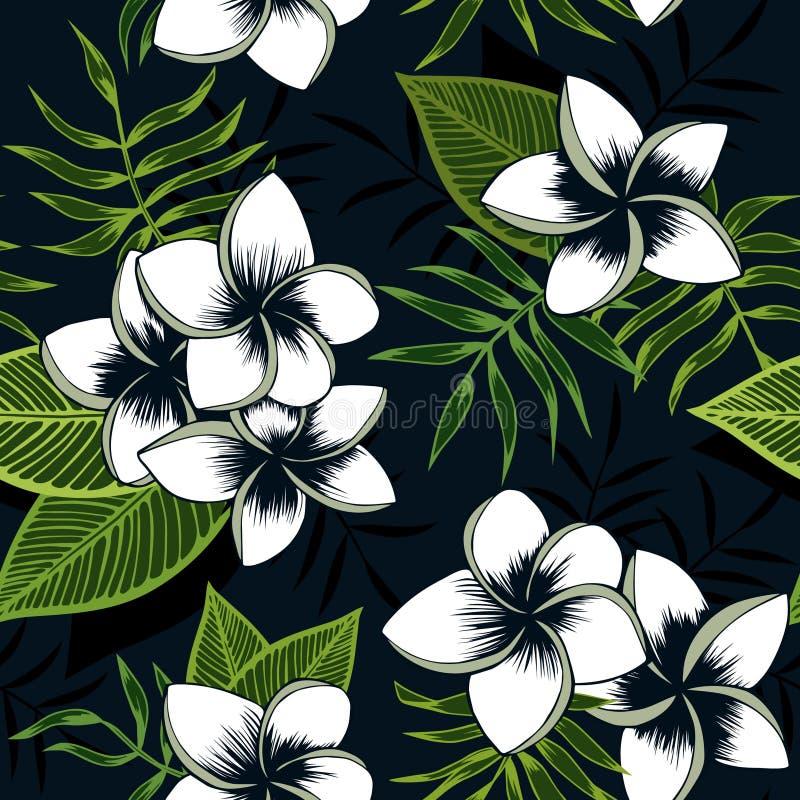 Nahtloser Vektor tropisches Plumeria-Palmenmuster stockfoto