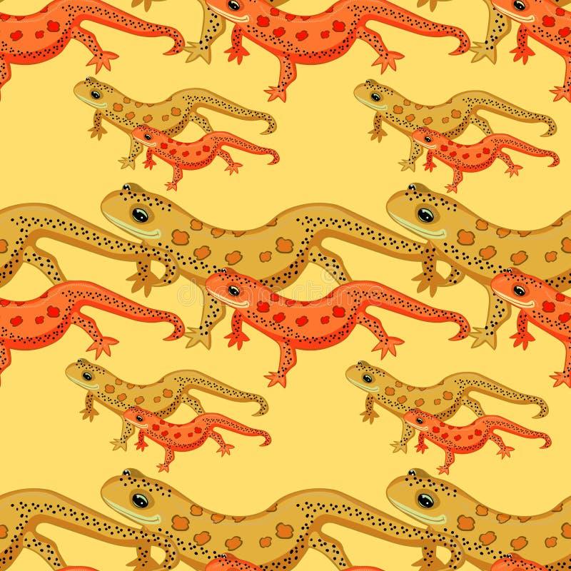 Nahtloses amerikanisches Rot Muster Tritons nach Osten beschmutzte Salamander vektor abbildung