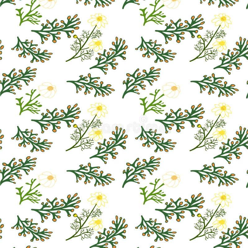 Nahtloses Blumenmuster Getrennte vektorabbildung lizenzfreie stockfotografie