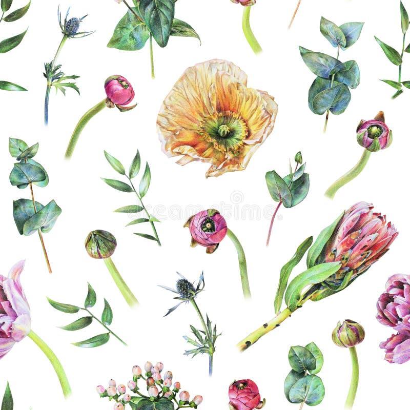 blumenhintergrund mit hand gezeichneter mohnblume und