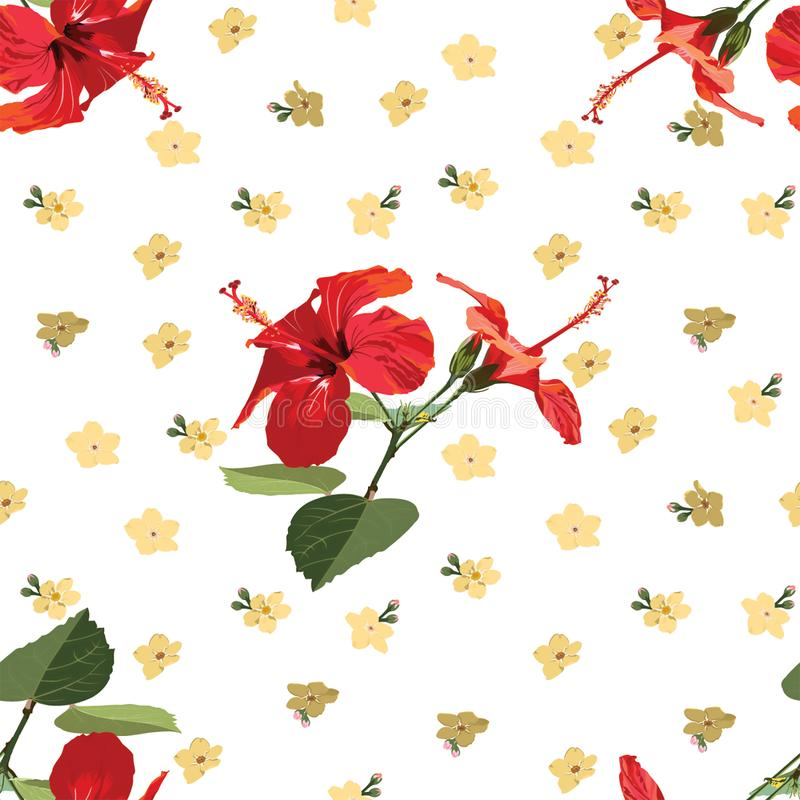 Nahtloses Blumenmuster-roter Hibiscus - Rose Mallow lizenzfreie stockbilder