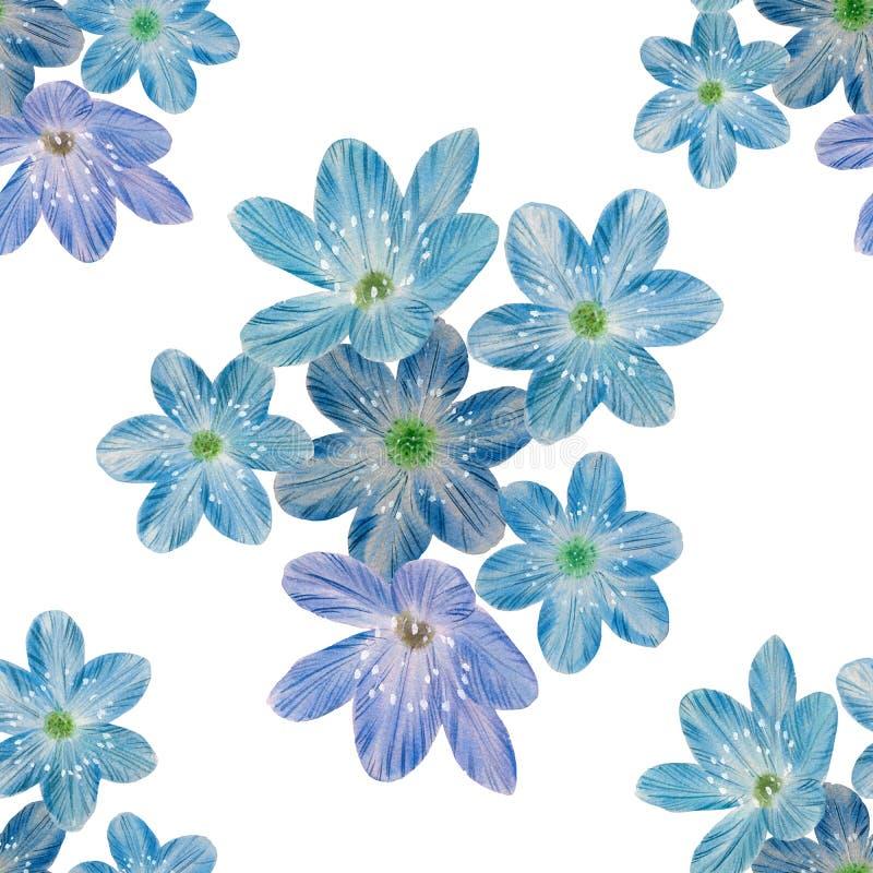 Nahtloses botanisches Muster von blauen Blumen vektor abbildung
