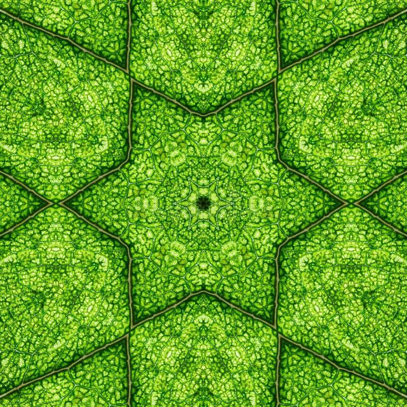 Nahtloses mit Blumenmuster des Blumensommers Abstrakte Mandala stock abbildung