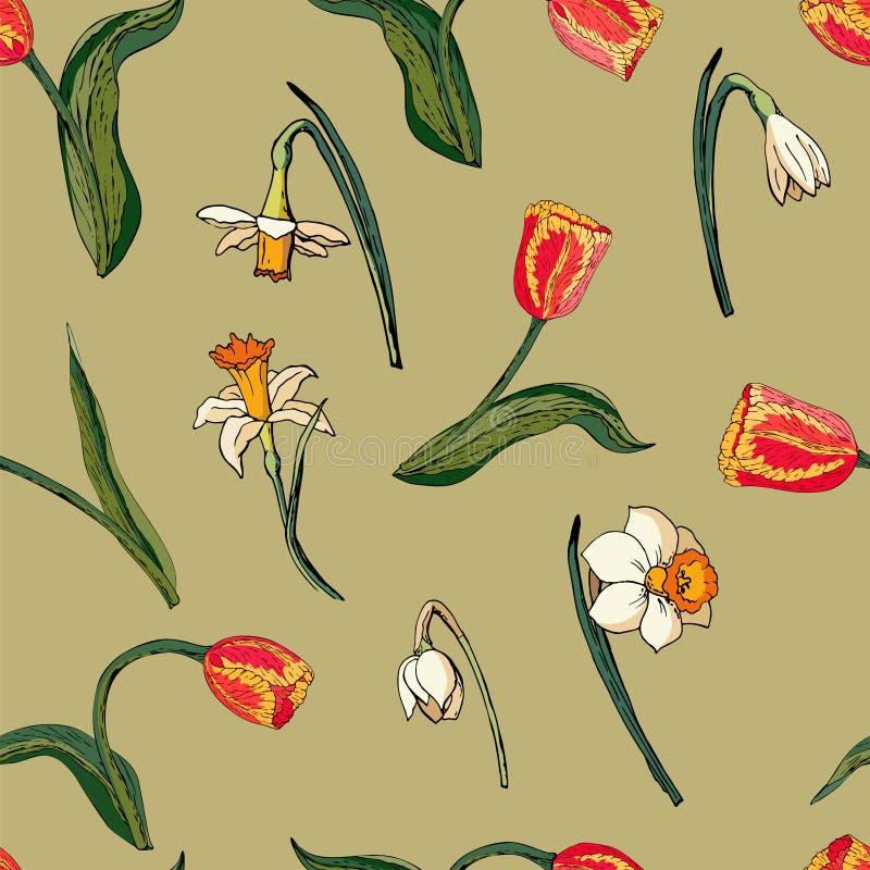 Nahtloses mit Blumenmuster des Vektors mit roten Tulpen und Narzissen lizenzfreie abbildung