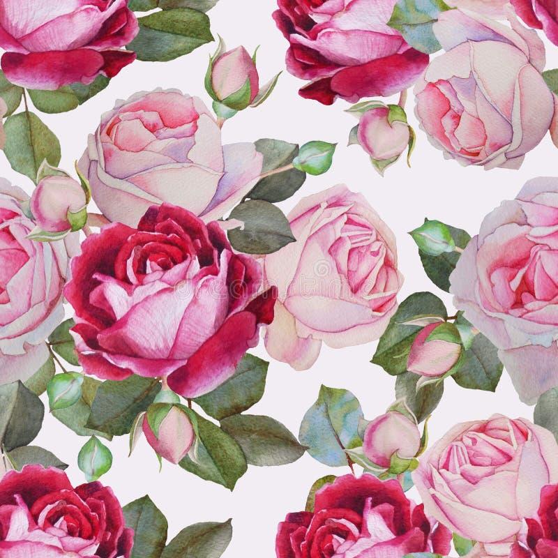 Nahtloses mit Blumenmuster mit den rosa und purpurroten Rosen des Aquarells lizenzfreie abbildung