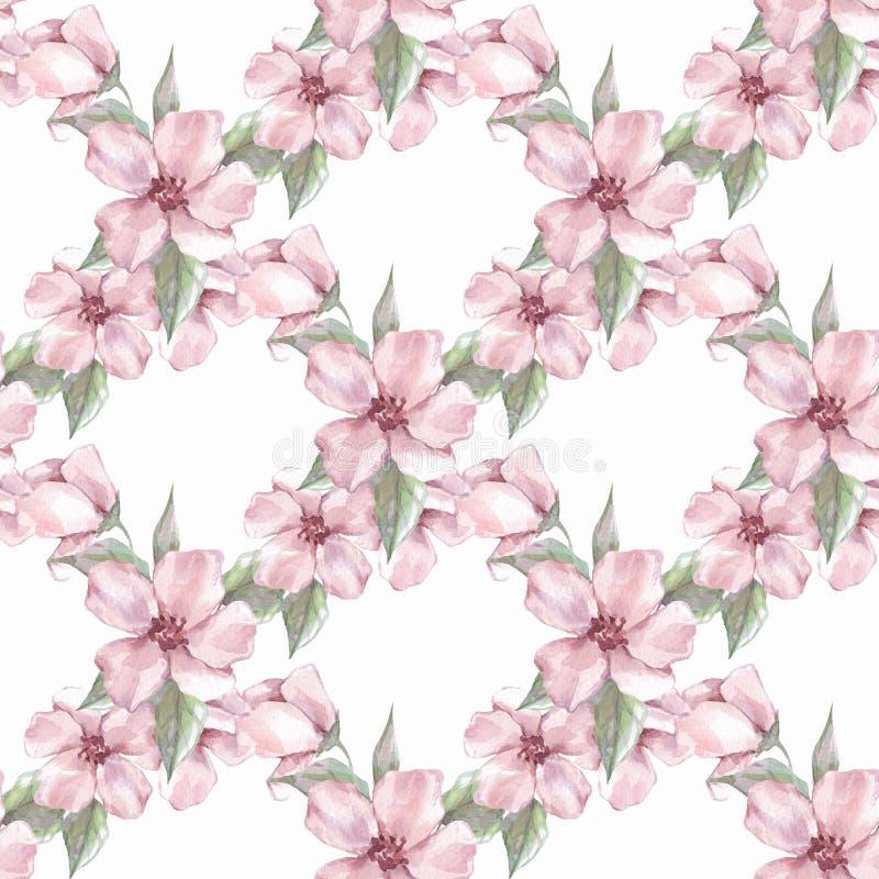 Nahtloses mit Blumenmuster mit Rosablumen 1 lizenzfreie abbildung