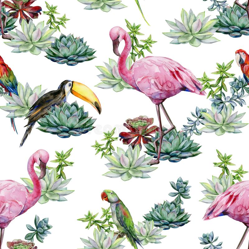 Nahtloses Muster Aquarell Succulents alexandrinischen Papageien andgreen lizenzfreie abbildung