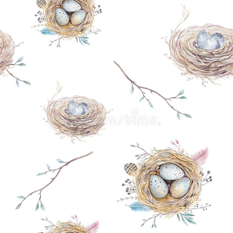 Nahtloses Muster der Aquarellnatürlichen Blumenweinlese mit Nestern, wr lizenzfreie abbildung