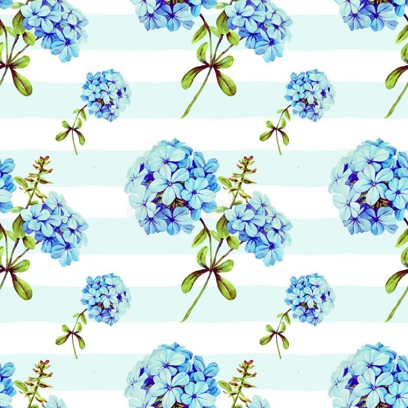 Nahtloses Muster der Illustration des blauen Jasmins vektor abbildung