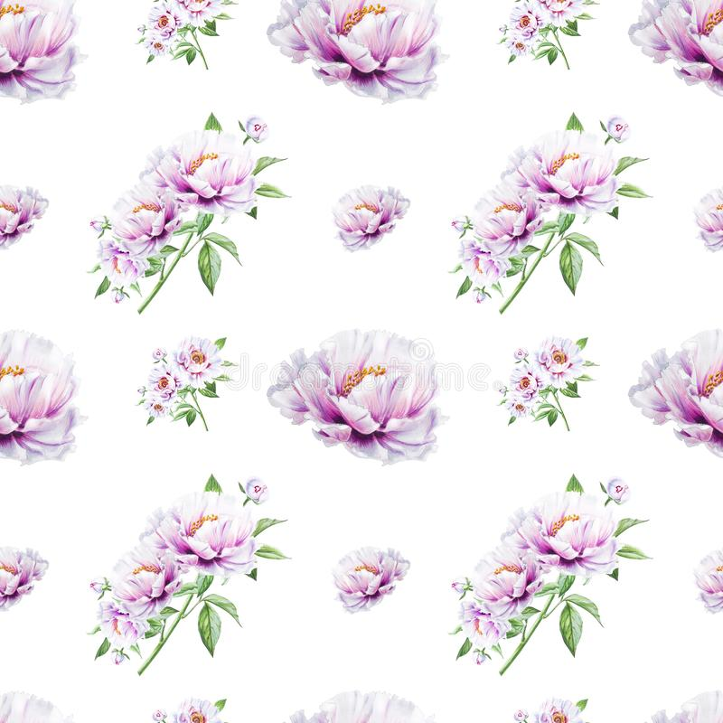 Nahtloses Muster der schönen weißen Pfingstrose Blumenstrau? von Blumen Abbildung kann f?r verschiedene Zwecke benutzt werden Mar lizenzfreie abbildung