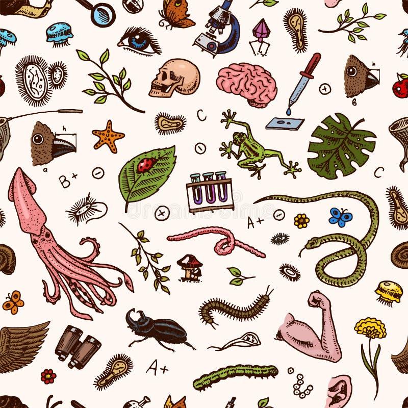 Nahtloses Muster der Wissenschaft Wissenschaftliches Labor in der Biologie Ikonen-Satz Biochemie-Forschung Lebende Geschöpfe vektor abbildung
