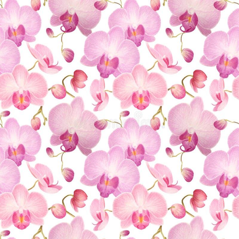 Nahtloses Muster des Aquarells mit Orchideen stock abbildung