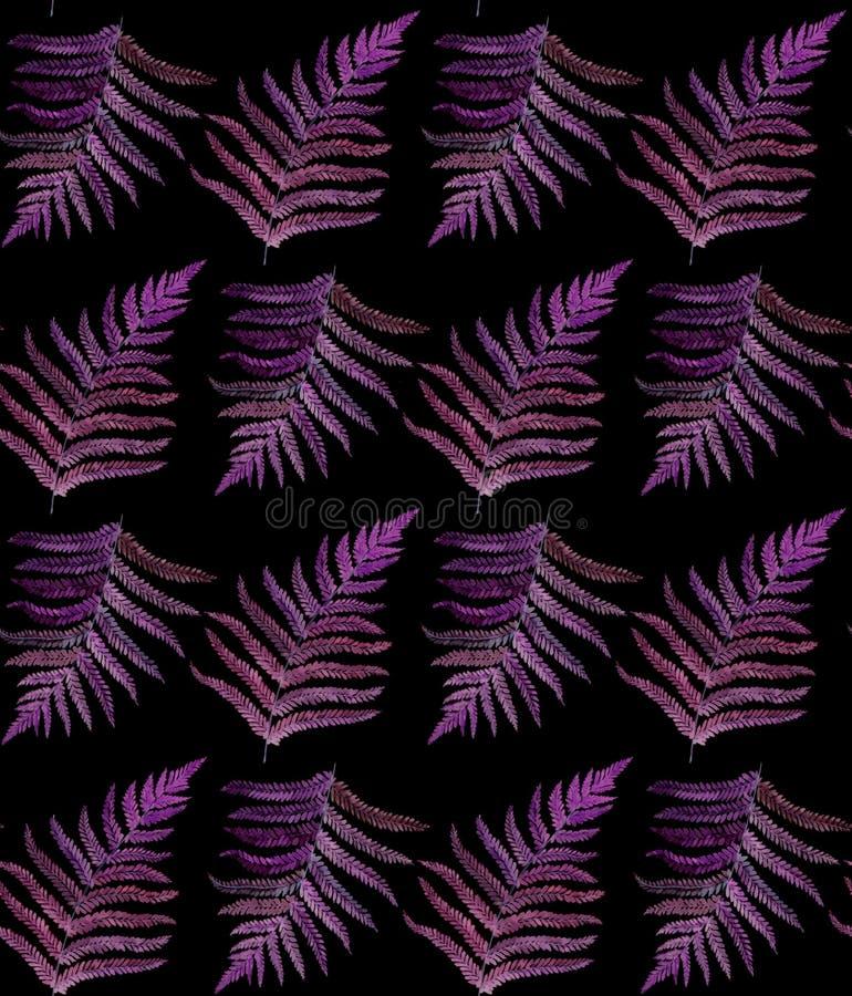 Nahtloses Muster des Farnaquarells auf Schwarzem stockfotografie