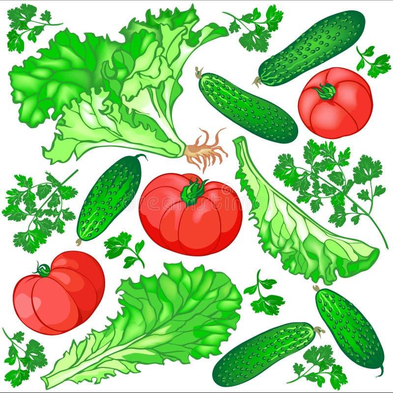 Nahtloses Muster des Frischgemüses für den Salat von Gurken, stockfotografie