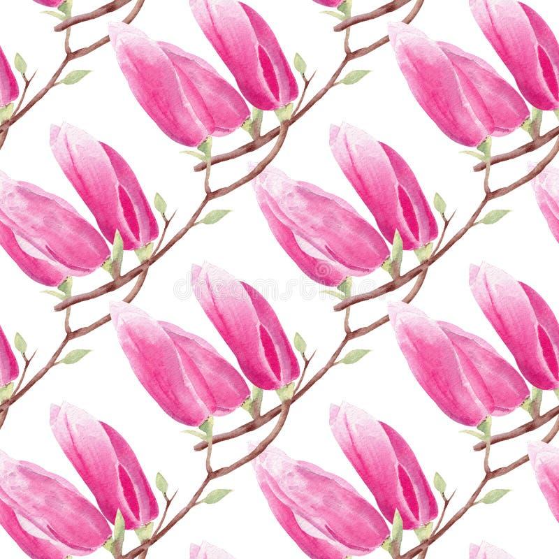 Nahtloses Muster des Magnolienniederlassungshandgezogenen Aquarells vektor abbildung