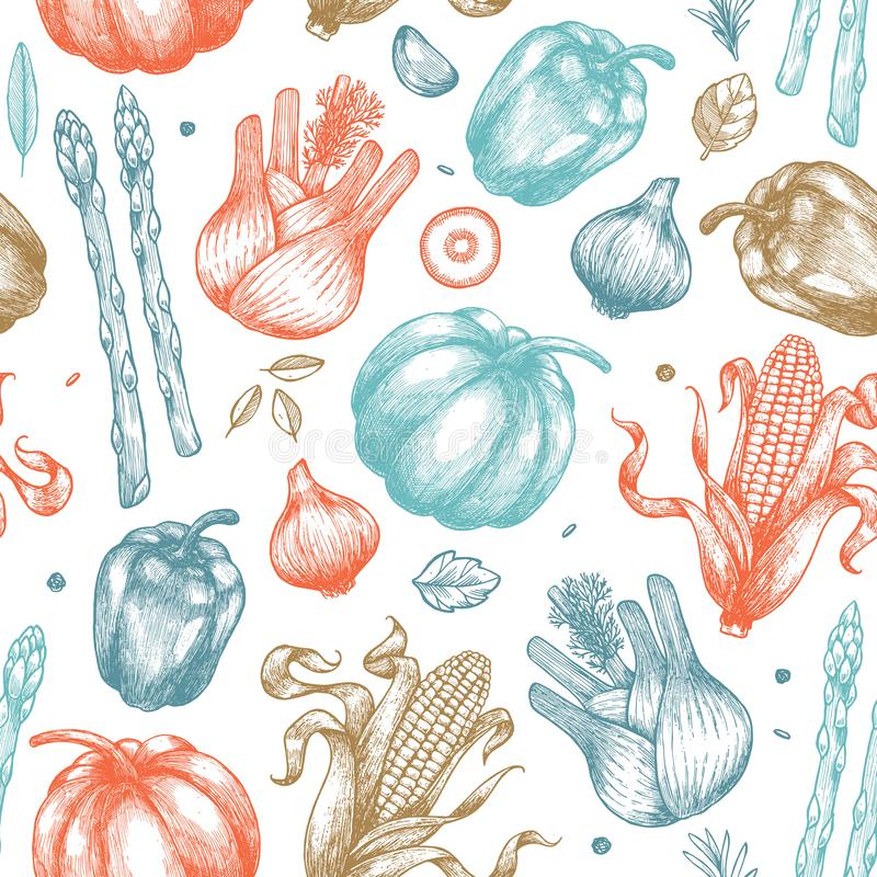 Nahtloses Muster des organischen Gemüses Handsketched-Weinlesegemüse Zeile Kunstabbildung stock abbildung