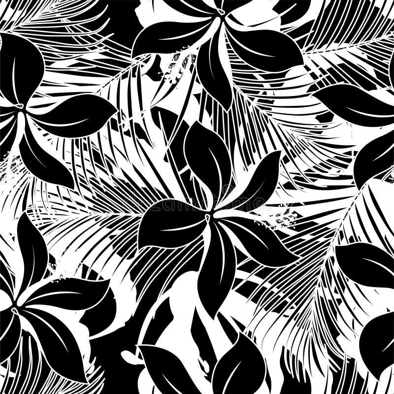 Nahtloses Muster des Schwarzweiss-Hibiscus lizenzfreie abbildung